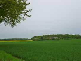 2013_himmelfahrt_015